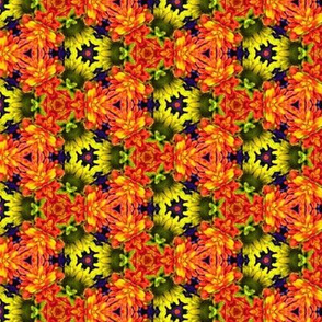 bright_yellow_green_orange_flowers