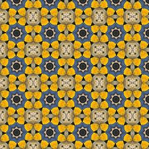 Daffodil Stars 0874