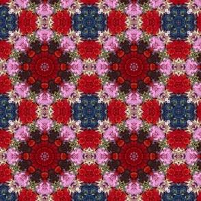 Flower Wheel 0806
