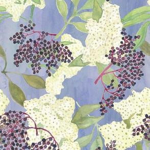 Elderberries and Flowers on Blue