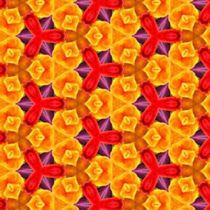yellow_orange_purple_flower_surprise