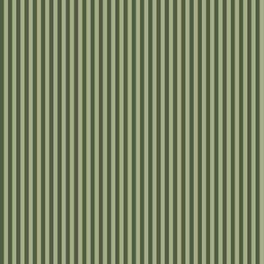 narrow olive stripes