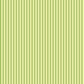skinny stripes - green tea