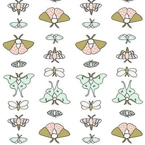 Lepidoptera // by Sweet Melody Designs