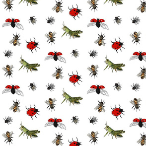 Insect repeat