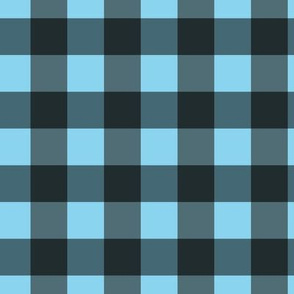 Blue-Black Check