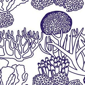 Coral (dark purple on white)