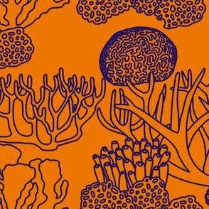 Coral (purple on orange)
