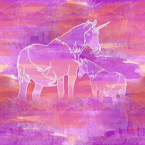 Unicorn Valley / Large Scale