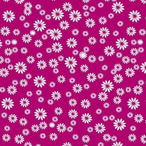Tiny Daisies on Dark Pink