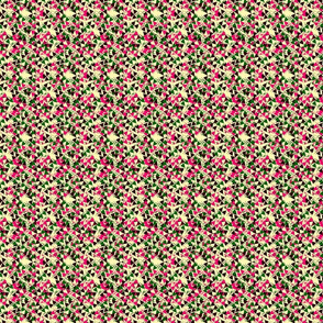 module_peach_pink_green-ed