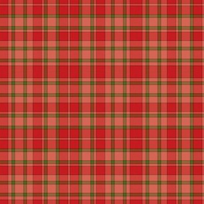 Native Pattern3 Red Green Plaid