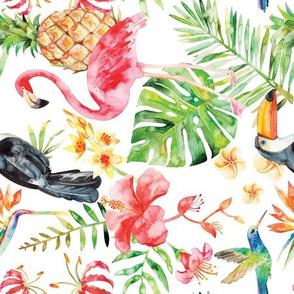 tropical watercolor