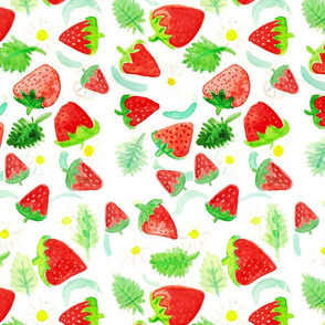 Strawberry Watercolor Toss
