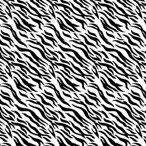 E3_zebra