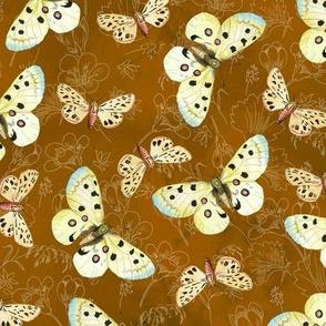 moths-orange