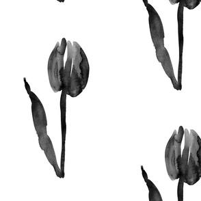 cestlaviv_tulip_no1bw