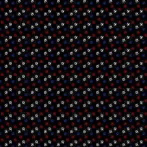 Ferret tracks - red white blue on black