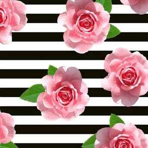 Pink Roses on Black and White Stripes