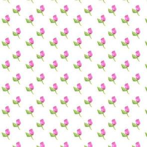 Tiny Rosebuds on White