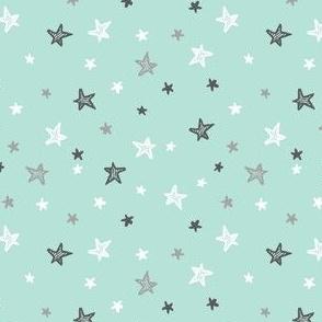 Show Me the Stars (mint)