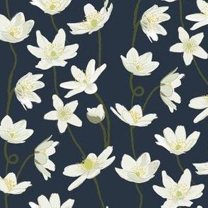 anemone - Navy