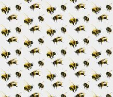 Watercolour bees on white