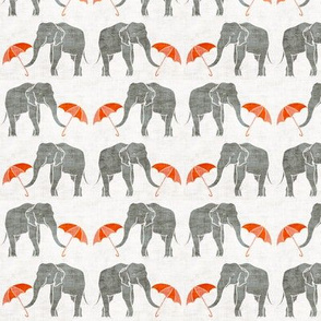 elephant_summer small