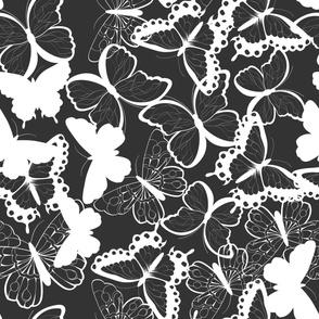 Butterfly pattern 011