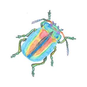 Rainbow Beetle Watercolor Medium