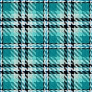 Turquoise Black and White Plaid