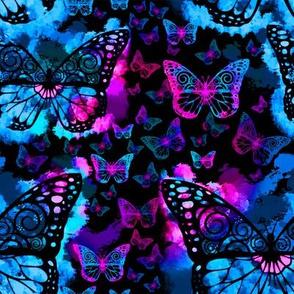 Rainbow Butterfly Fairies on Black