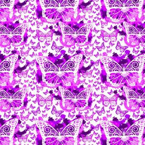 Purple Butterfly Fairies on White
