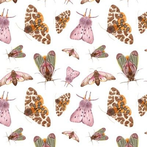 watercolor lightness moths