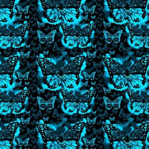 Blue Butterfly Fairies on Black