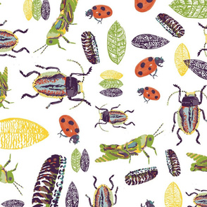 watercolor-insects01