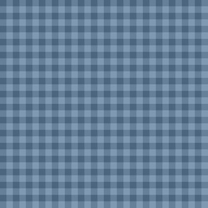 denim blue gingham