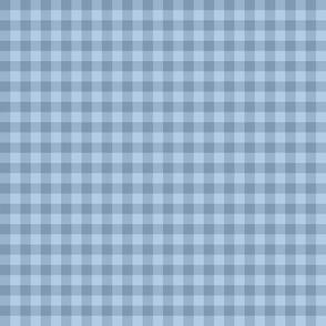 faded denim blue gingham