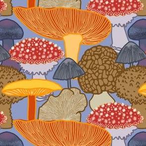 Mushroom Clusters (blue)