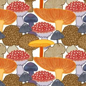 Mushroom Clusters (white)