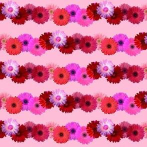 Daisy Chain/ Pink