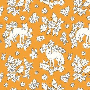 Foxes orange
