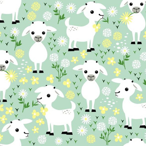 Baby goats on green