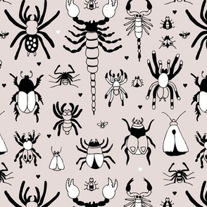 Bugs flies scorpions spiders and other creepy desert and tropical insects beige