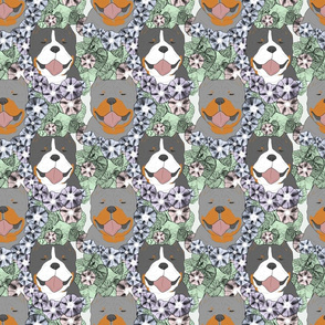 Floral American Bully portraits C