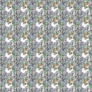 Small Floral Chihuahua portraits blue merle