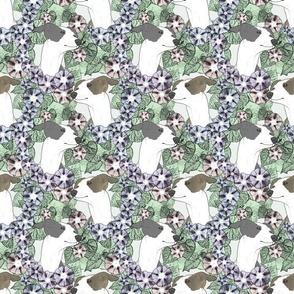 Floral Italian Greyhound portraits C