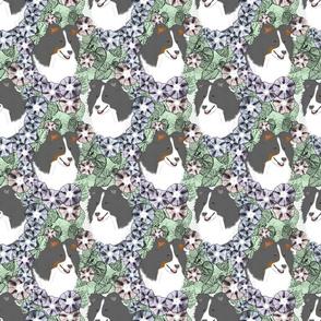 Floral Shetland sheepdog portraits B