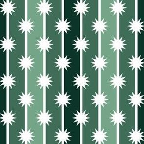 06487798 : starstripe : spoonflower0386