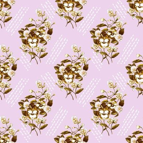 Pansy Retro Lilac